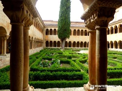 Yacimiento Clunia Sulpicia - Desfiladero de Yecla - Monasterio Santo Domingo de Silos - Ciprés de S
